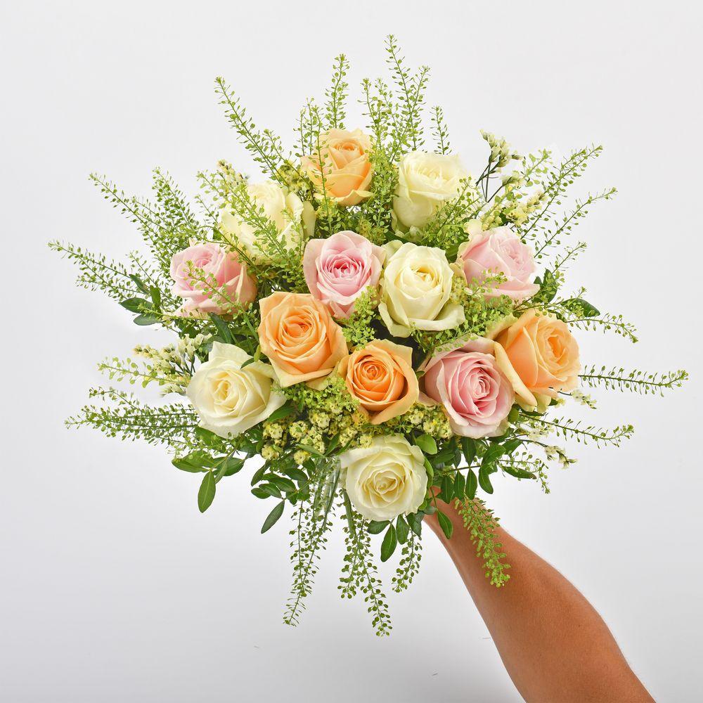 Rose melba