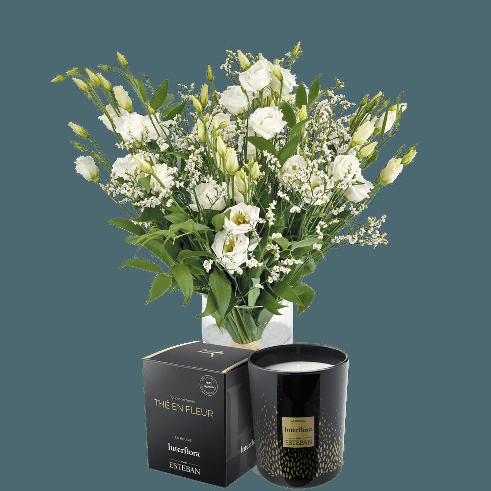Plumetis et sa bougie parfumée Esteban