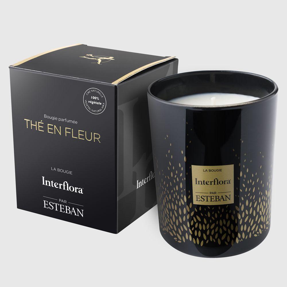 Velours et sa bougie parfumée Esteban