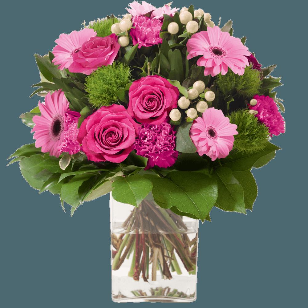 Amour éternel rose