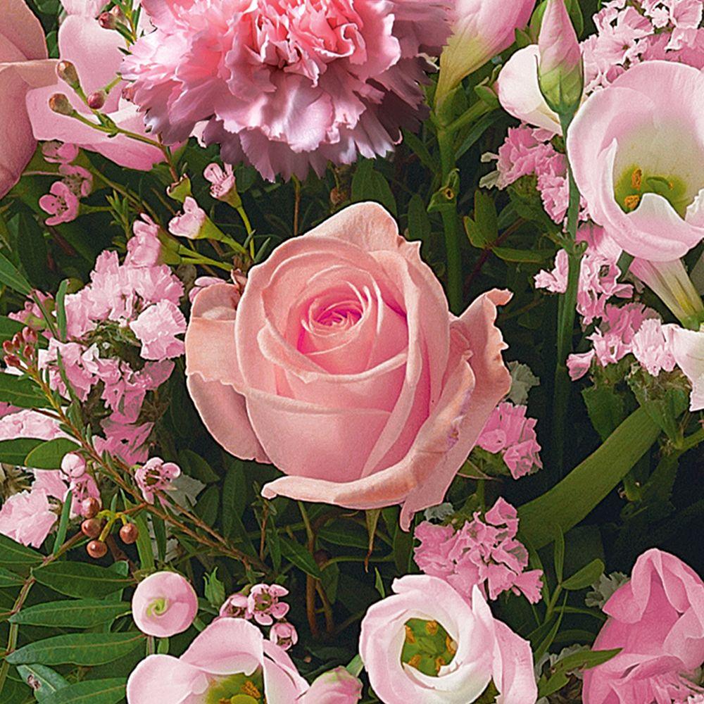 Cérémonie rose