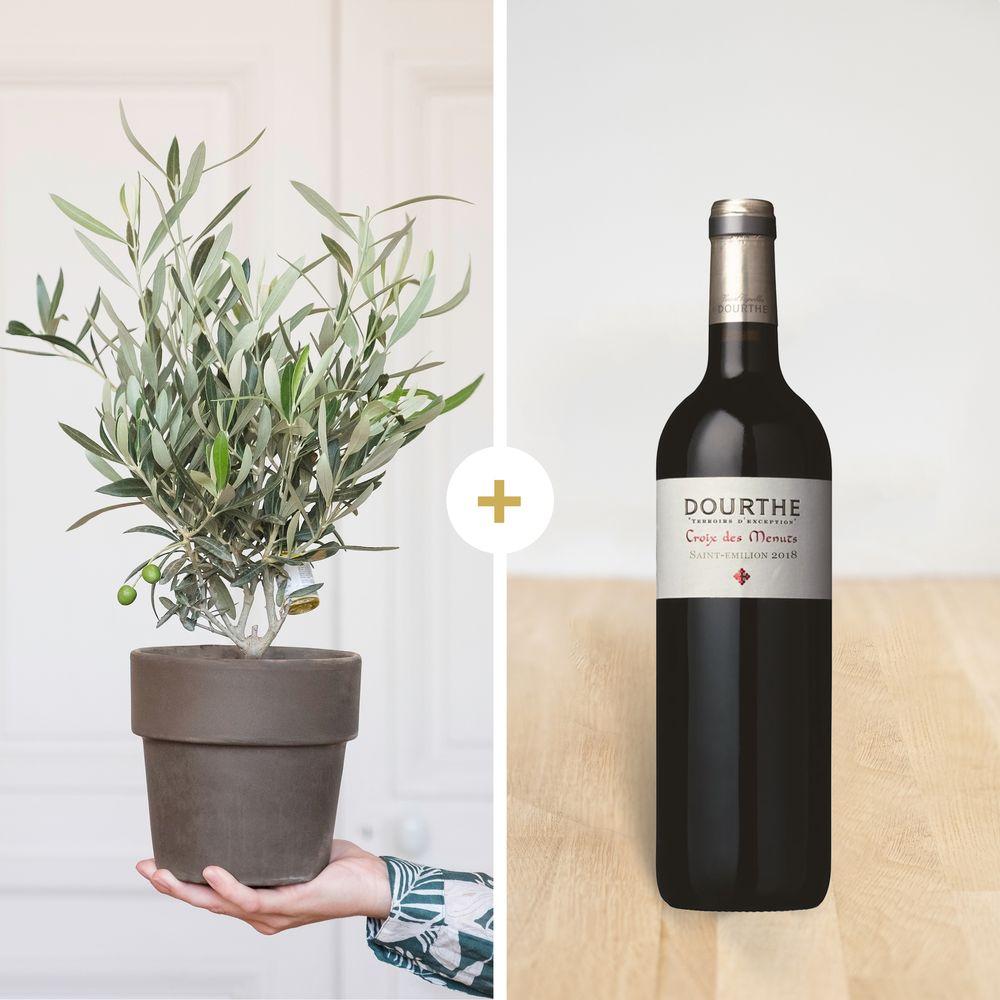Olivier et son vin St Emilion Dourthe