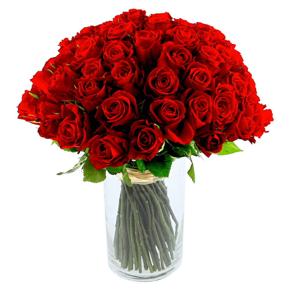 Brassée de 101 roses rouges Max Havelaar