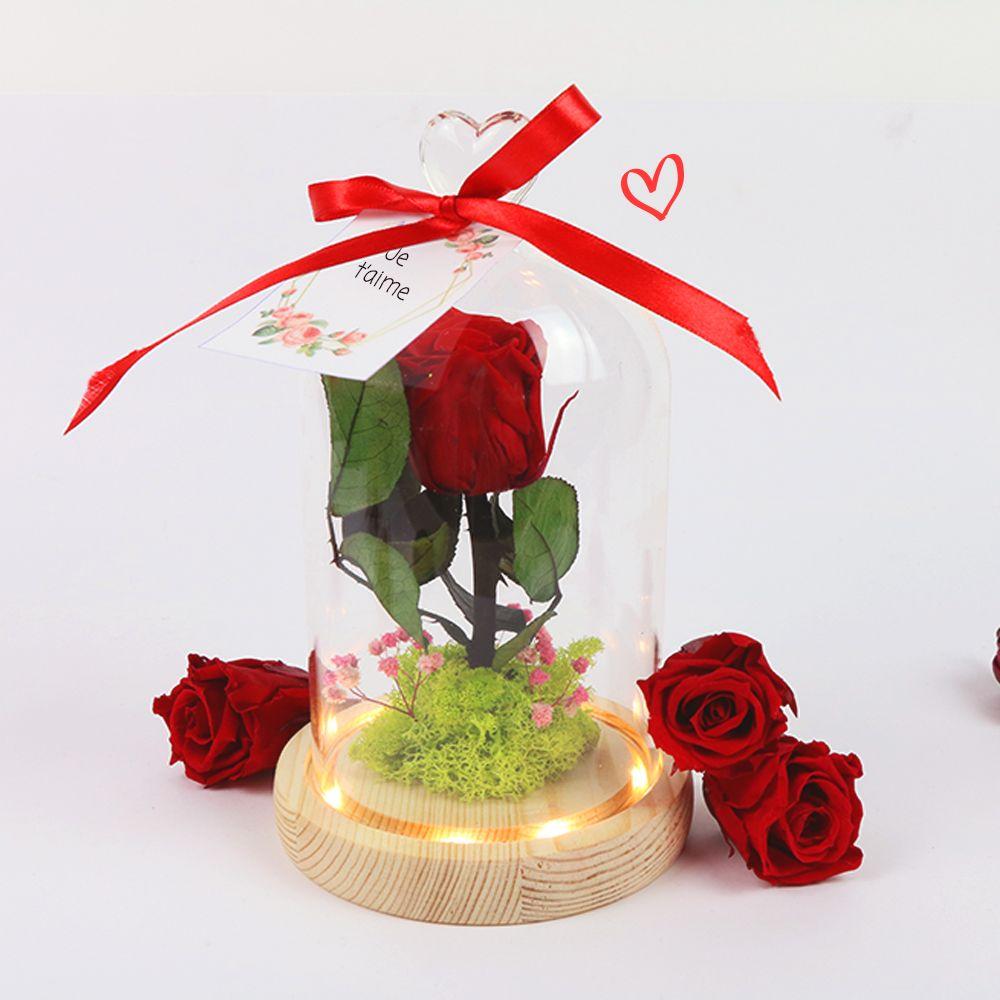 Rose sous cloche lumineuse