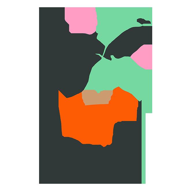 Plantes choisies avec soin