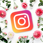 Interflora sur Instagram