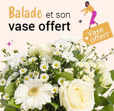 Découvrez notre bouquet Balade et son vase offert