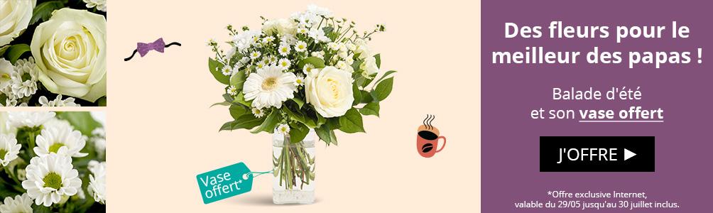 Balade d'été et son vase offert