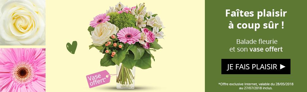Profitez d'un vase offert sur notre bouquet Balade fleurie