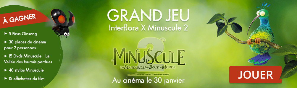 Participez au Grand Jeu Interflora x Minuscule 2