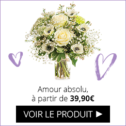 Bouquet amour absolu