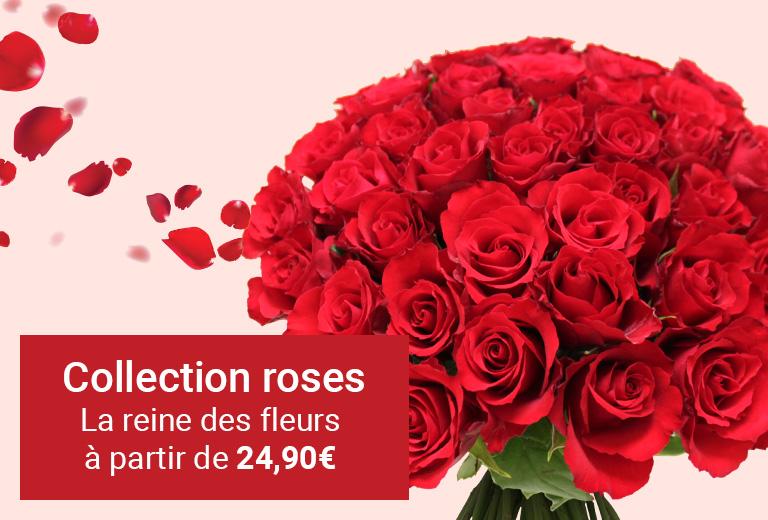 Collection Roses à partir de 24,90€