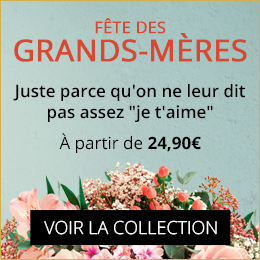 Collection Fête des Grands-Mères