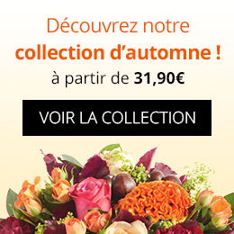 Collection de saison automne