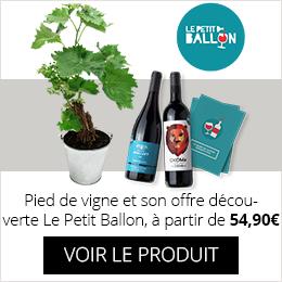 Pied de vigne et son St offre Découverte Petit Ballon