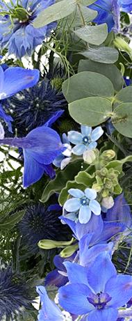 Bouquet Rêve Bleu
