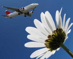 la livraison de fleurs à l'étranger