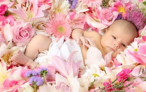 Quelles fleurs choisir pour une naissance