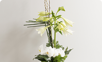 Fleurissement d'accueil
