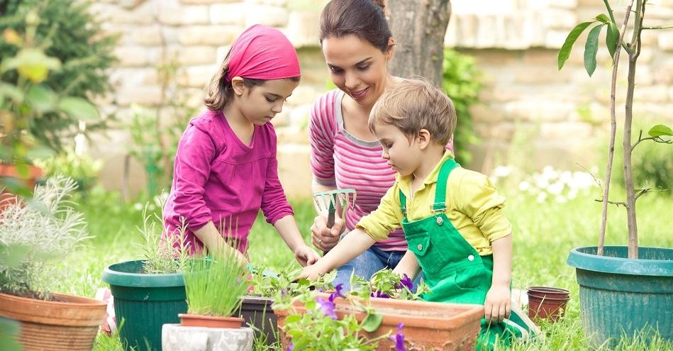 Quelle plante choisir pour initier les enfants au jardinage