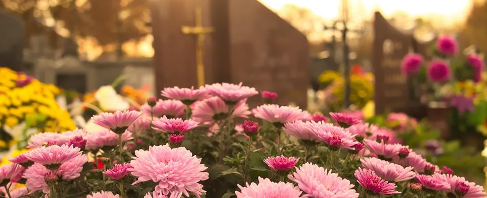 Entretenir les fleurs sur une tombe