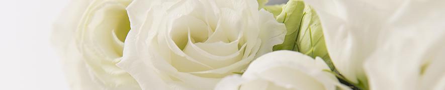 Chèques-fleurs Interflora