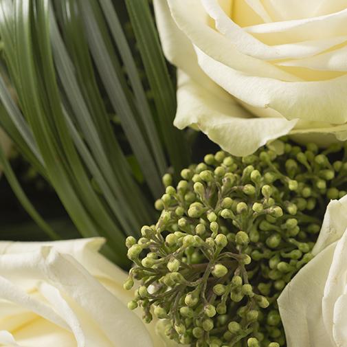 Bouquet de roses Capri blanc