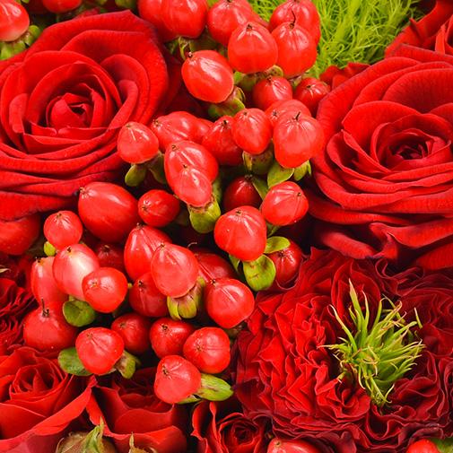 Bouquet de roses Cupidon et son ourson Harry