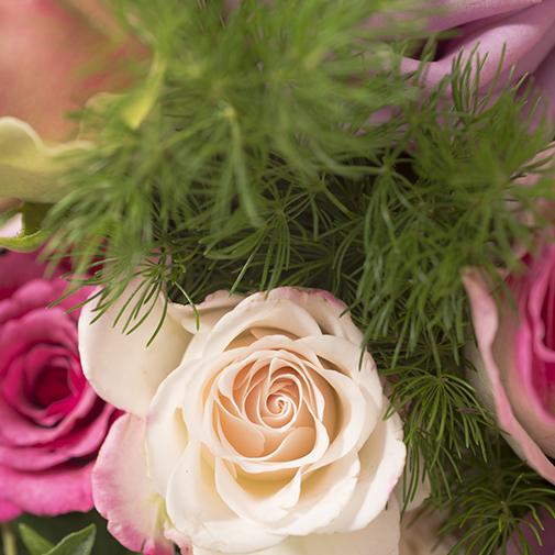 Bouquet de roses Esquisse