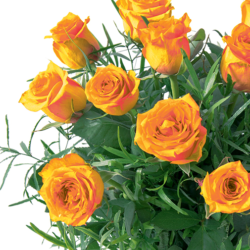 Bouquet de roses Glossy orange