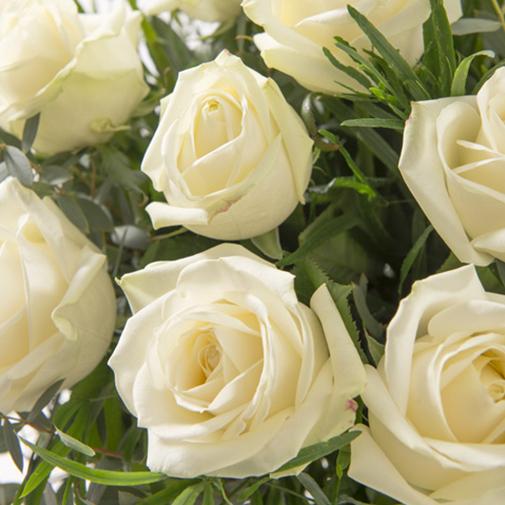 Bouquet de roses Glossy blanc