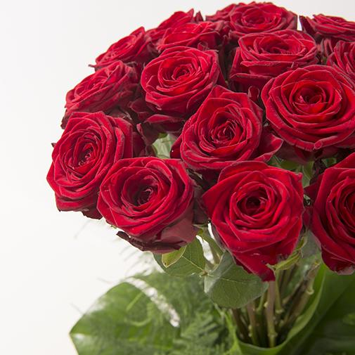 Bouquet de roses Idylle