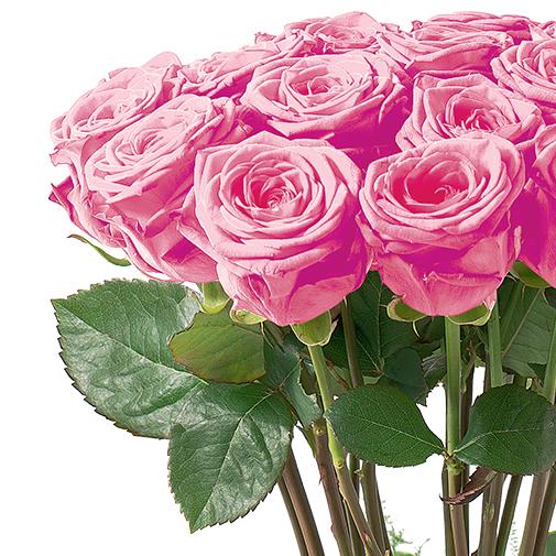 Bouquet de roses Idylle rose