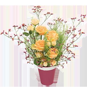 Bouquet de roses Mielrose Collection Bon rétablissement