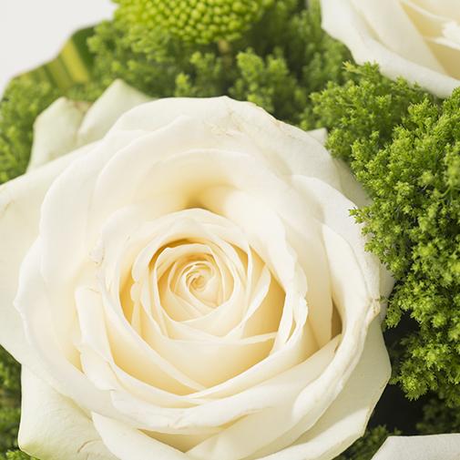 Bouquet de roses Félicitations !