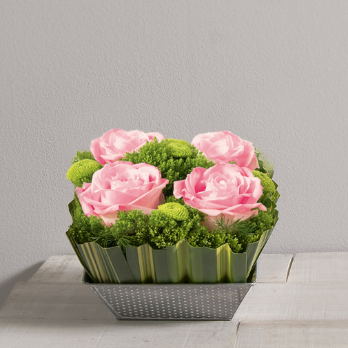 Bouquet de roses Ouate rose