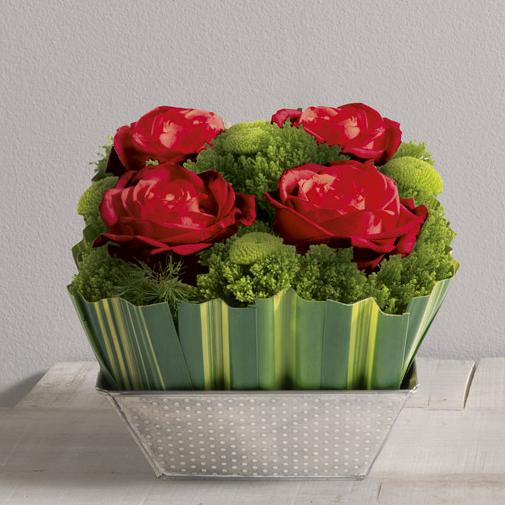 Bouquet de roses Ouate rouge