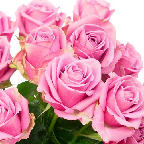 Bouquet de roses Passion rose