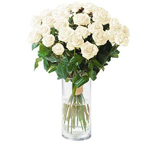 Passion blanc - interflora