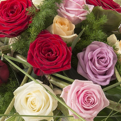 Bouquet de roses Poésie