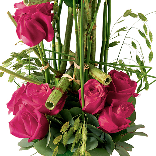 Bouquet de roses Plume rose
