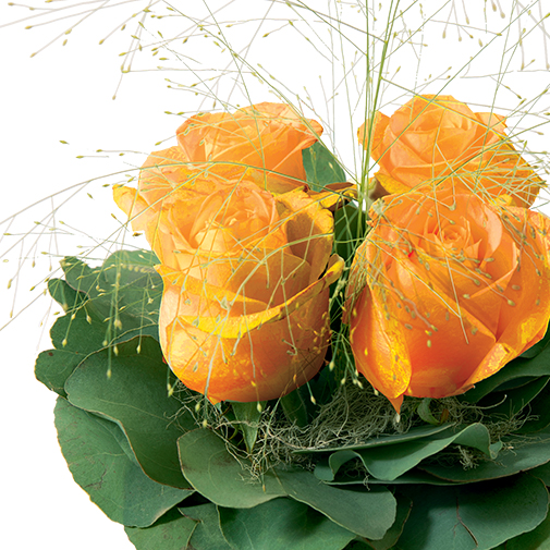 Bouquet de roses Poudré orange