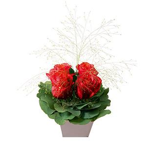 Poudre rouge - interflora
