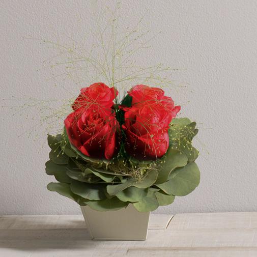 Bouquet de roses Poudré rouge