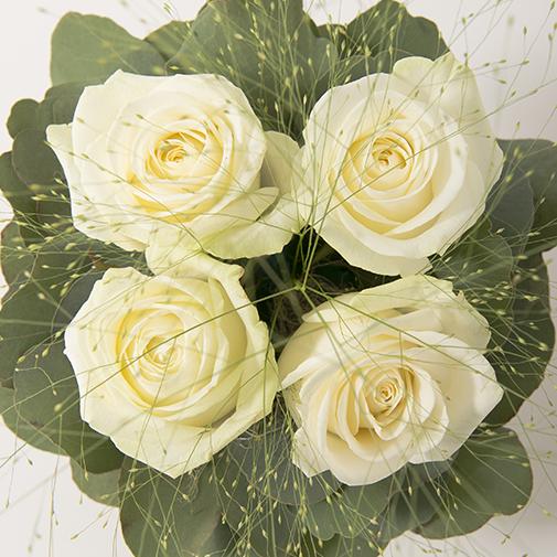 Bouquet de roses Poudré blanc