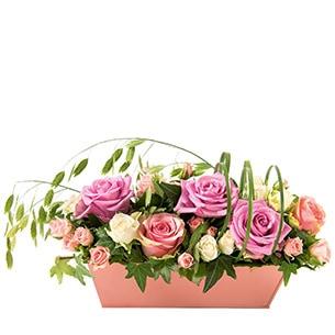 Romance - interflora