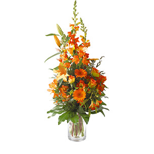 Harmonie orange - interflora