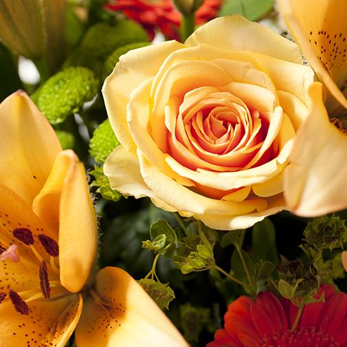 Bouquet de fleurs Voyage