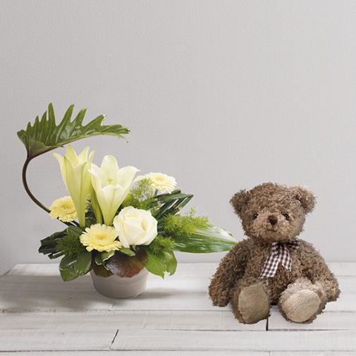 Fleurs et cadeaux Chou et l'ourson Harry