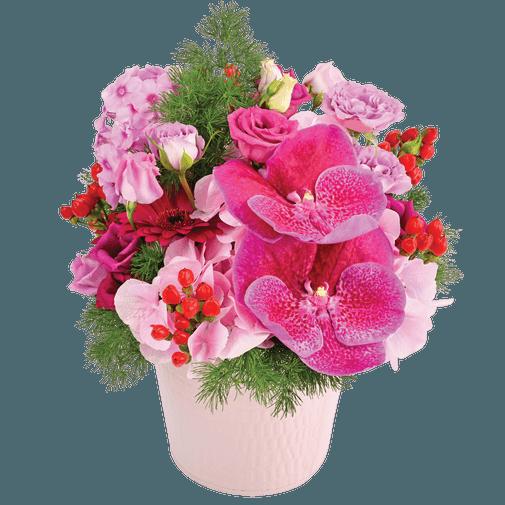 Composition florale Cupcake